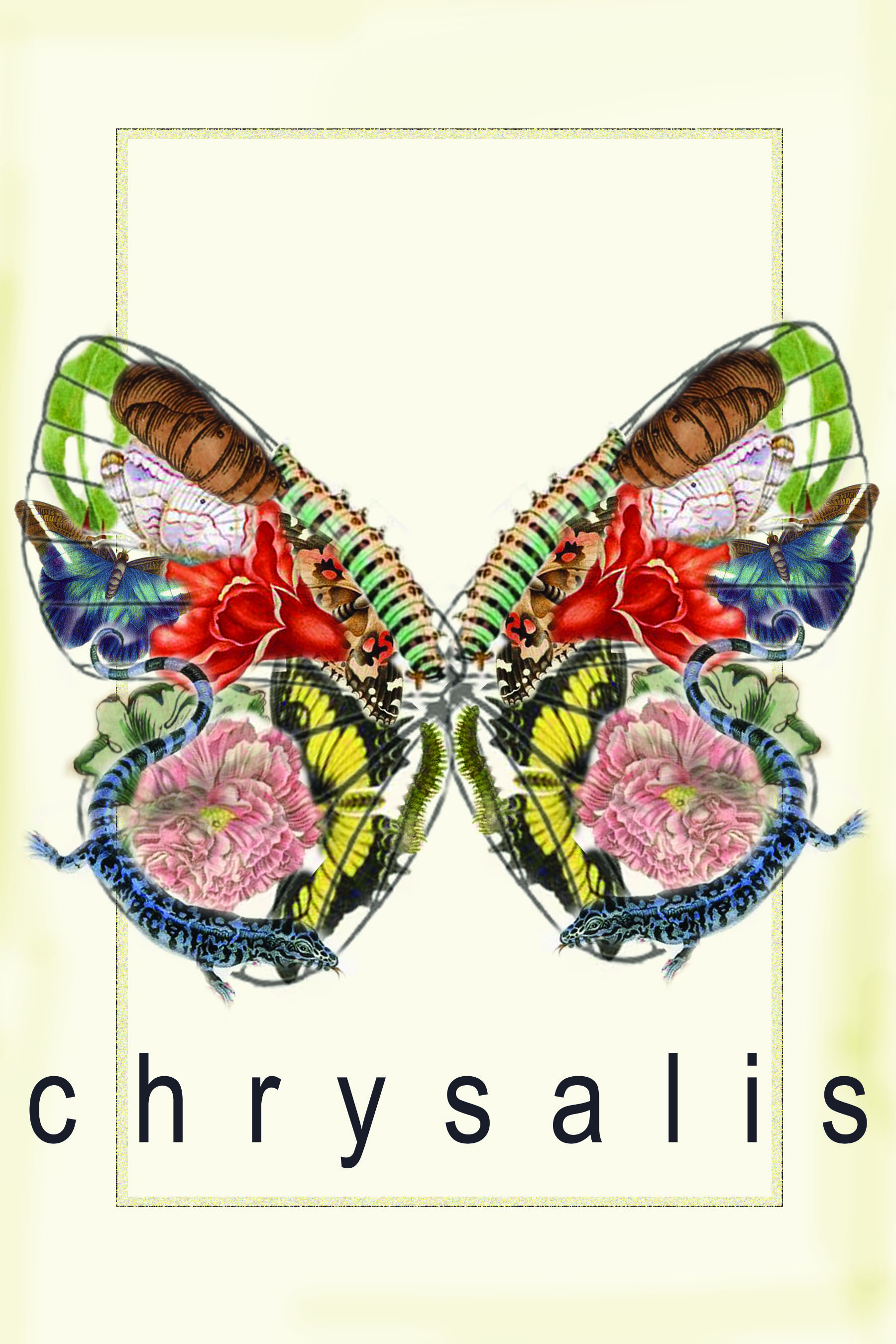 chrysalisFINAL